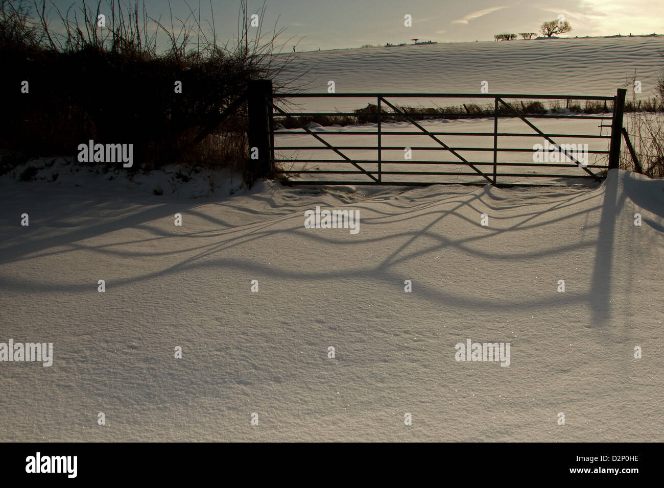 Shadow of a gate cast across the snow. Stock Photo