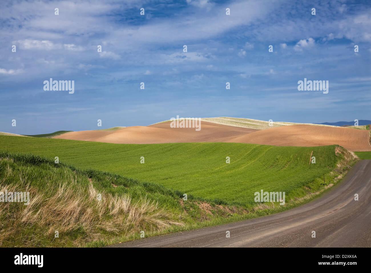 Road along rolling landscape - Stock Image