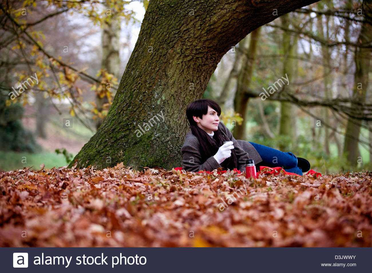 A woman sitting under a tree holding a hot drink in autumn - Stock Image