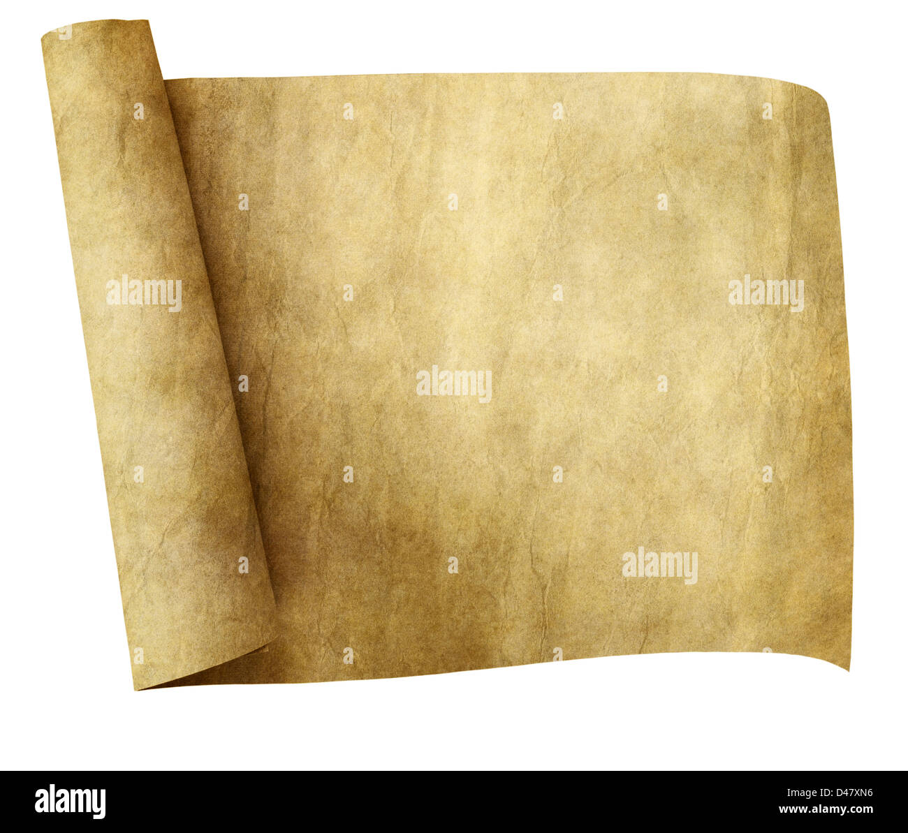 old parchment paper scroll isolated on white background stock photo