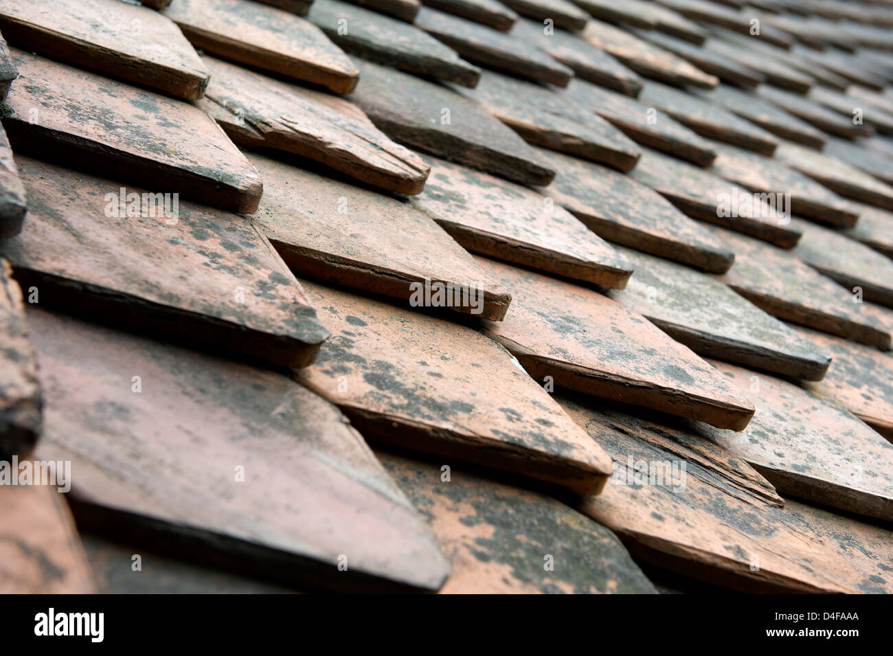 Gothic Tiles on the roof of Bran Castle also known as Dracula's Castle in Transylvania, Romania - Stock Image