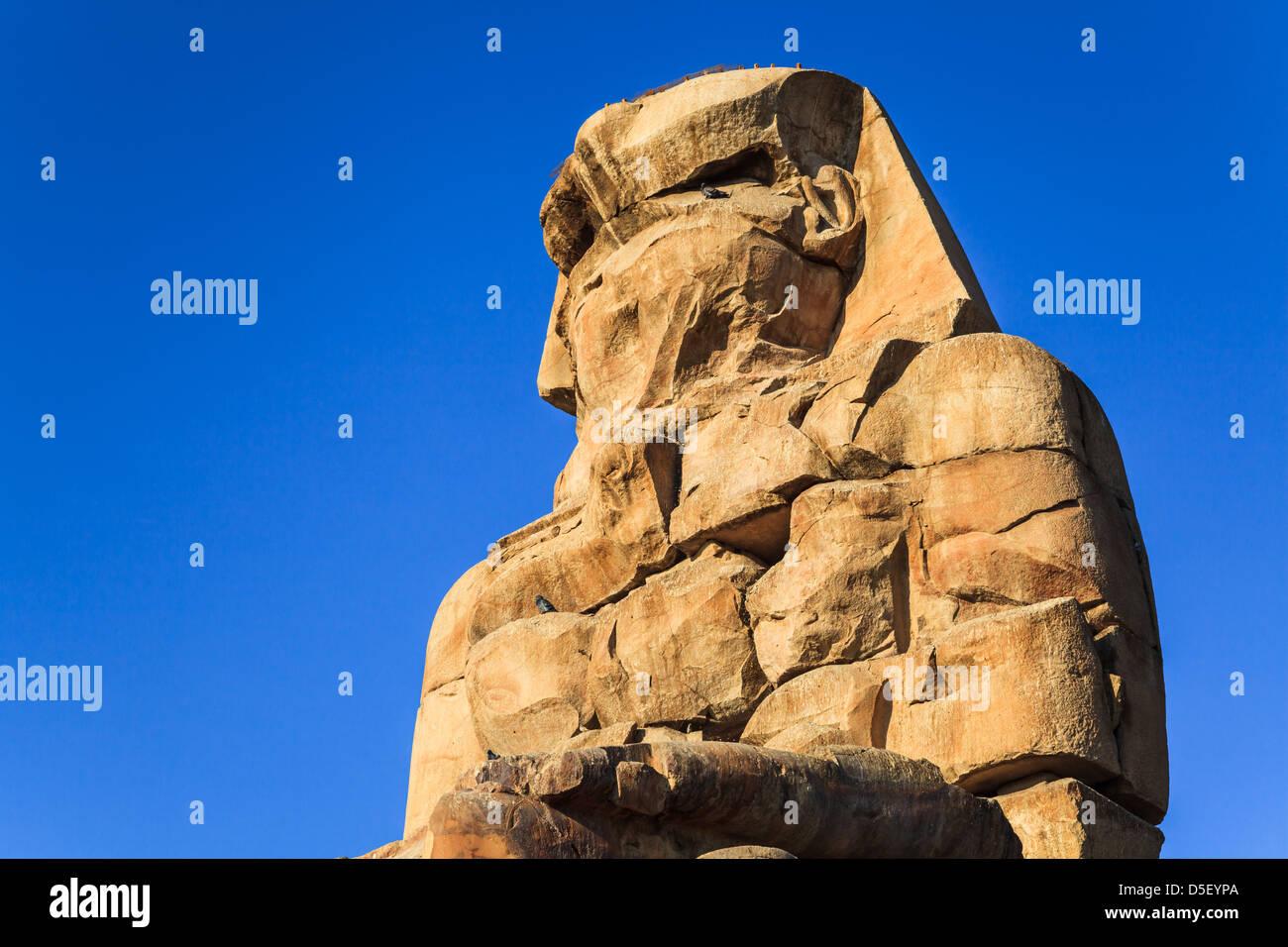ancient-sculpture-of-colossus-memnon-lux