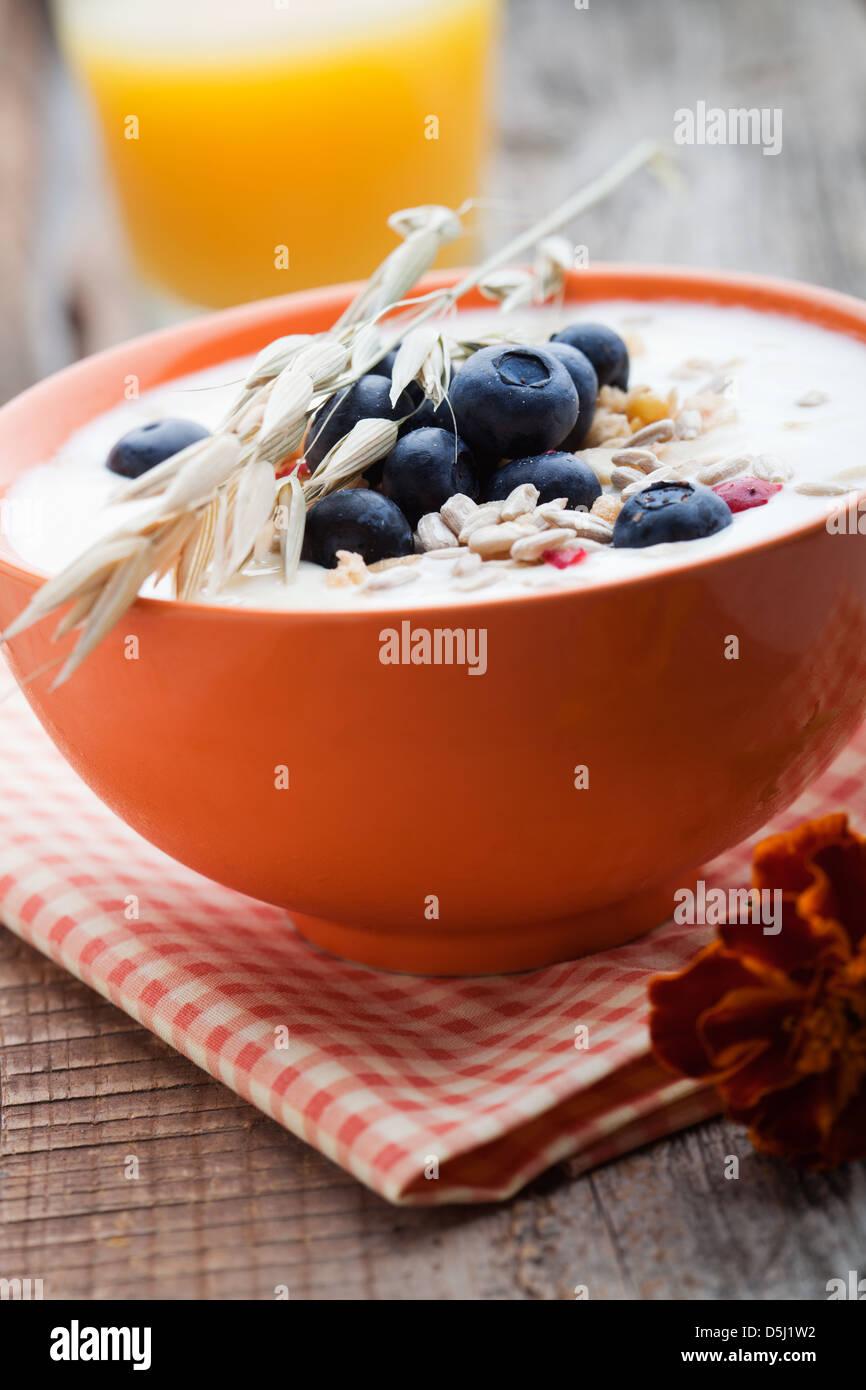 Yogurt with fresh blueberries and fruit muesli - Stock Image