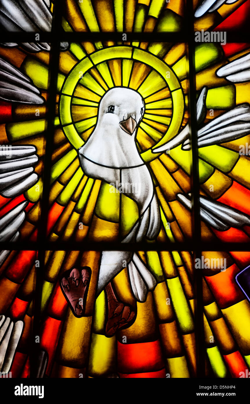 Stained Glass Of White Dove In A Catholic Church The Symbol Of The