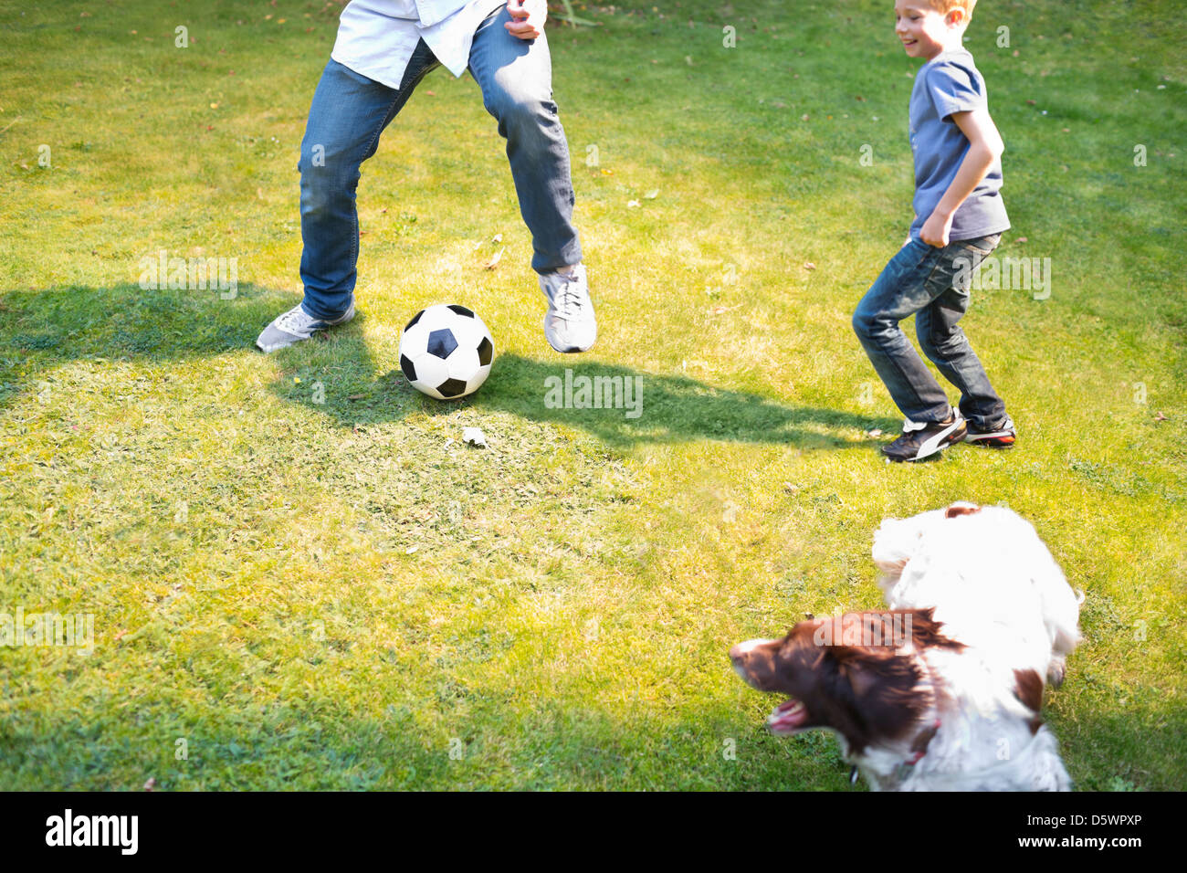 Boy playing soccer with dog outdoors - Stock Image