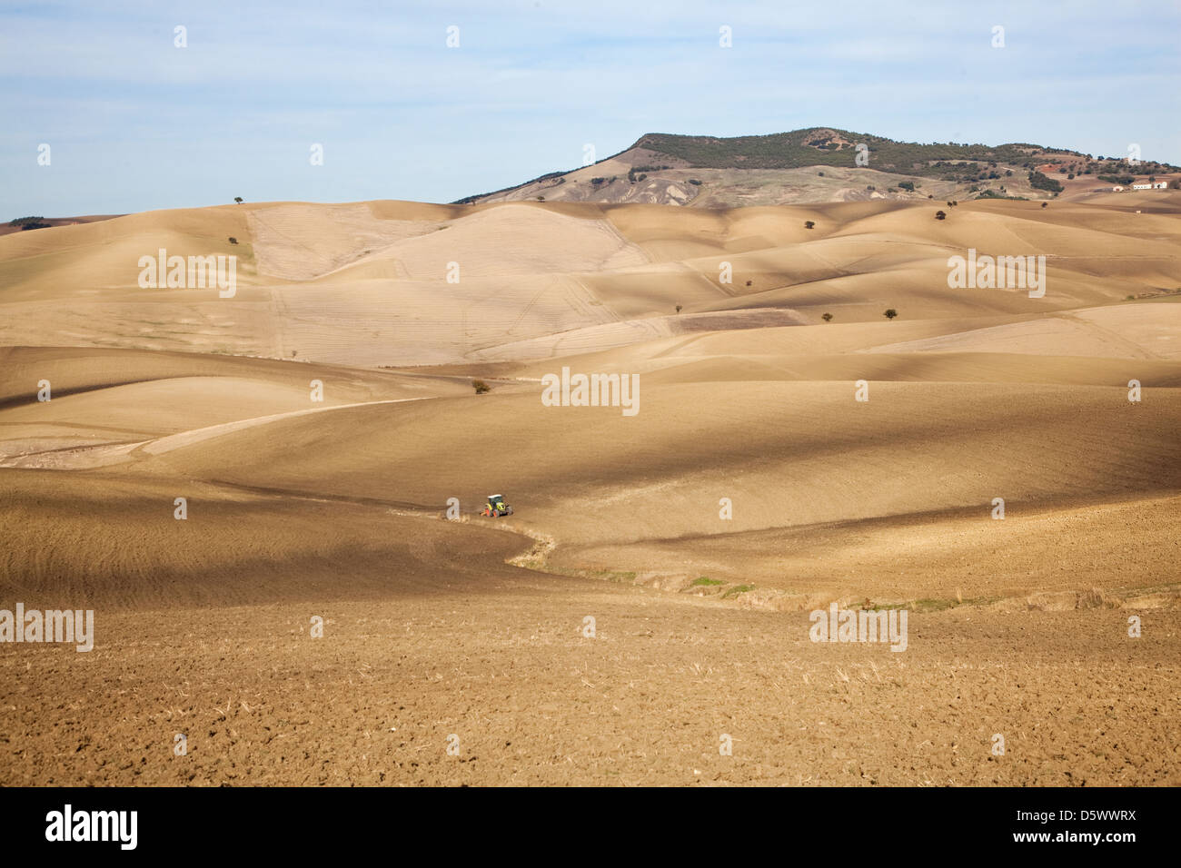 Dirt road in dry rural landscape - Stock Image