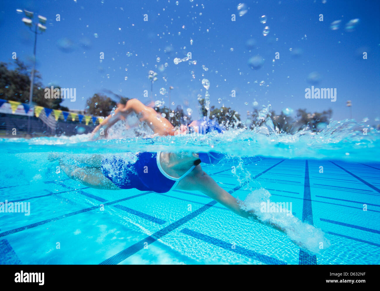 Female swimmer in United States swimsuit swimming in pool - Stock Image