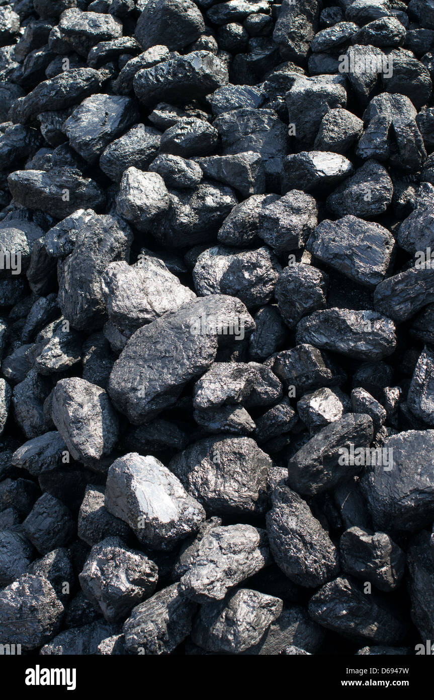 Heap of coal Beamish Museum north east England UK - Stock Image