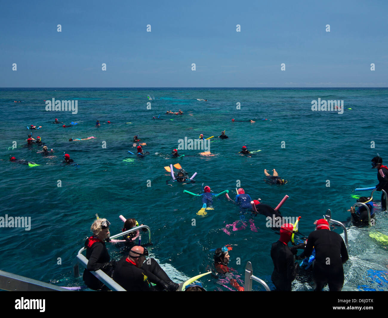 People snorkelling on Outer Great Barrier Reef near Cairns, North Queensland, Australia, Pacific - Stock Image