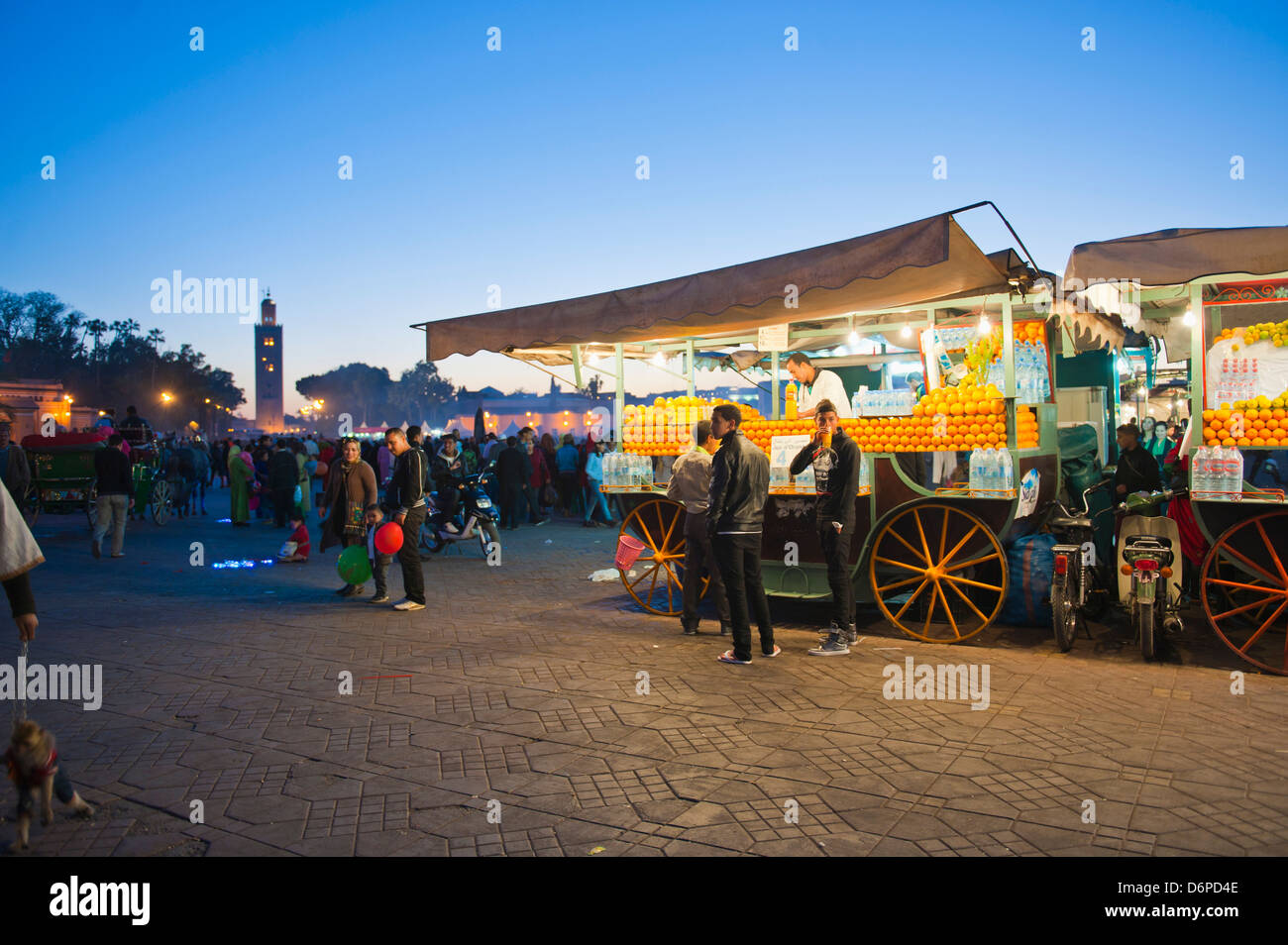 Fresh orange juice stall at night, Place Djemaa El Fna, Marrakech, Morocco, North Africa, Africa - Stock Image