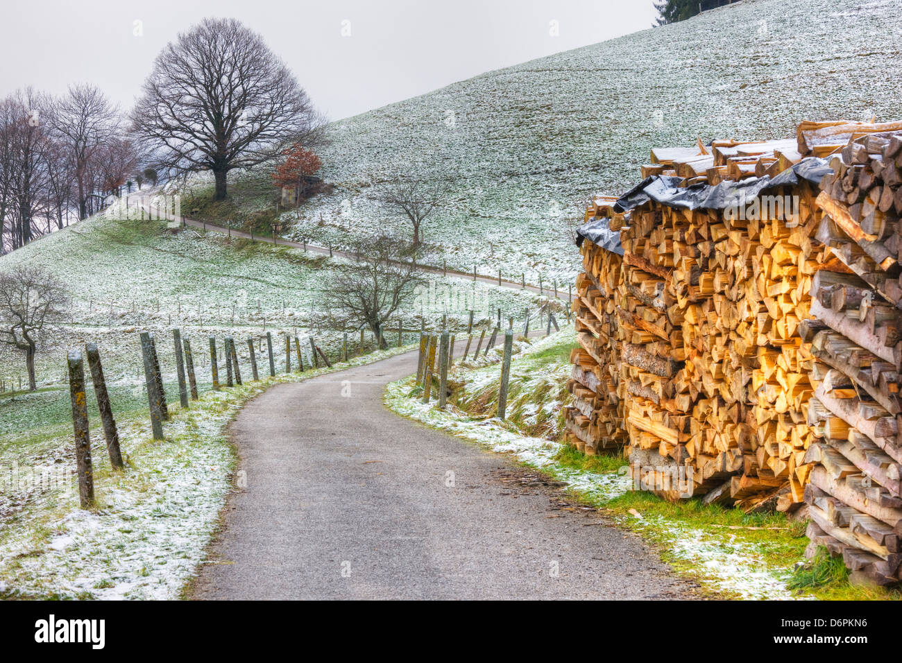 Winding road and wood pile near St. Trudpert Monastery, Munstertal, Black Forest, Baden-Wurttemberg, Germany, Europe - Stock Image