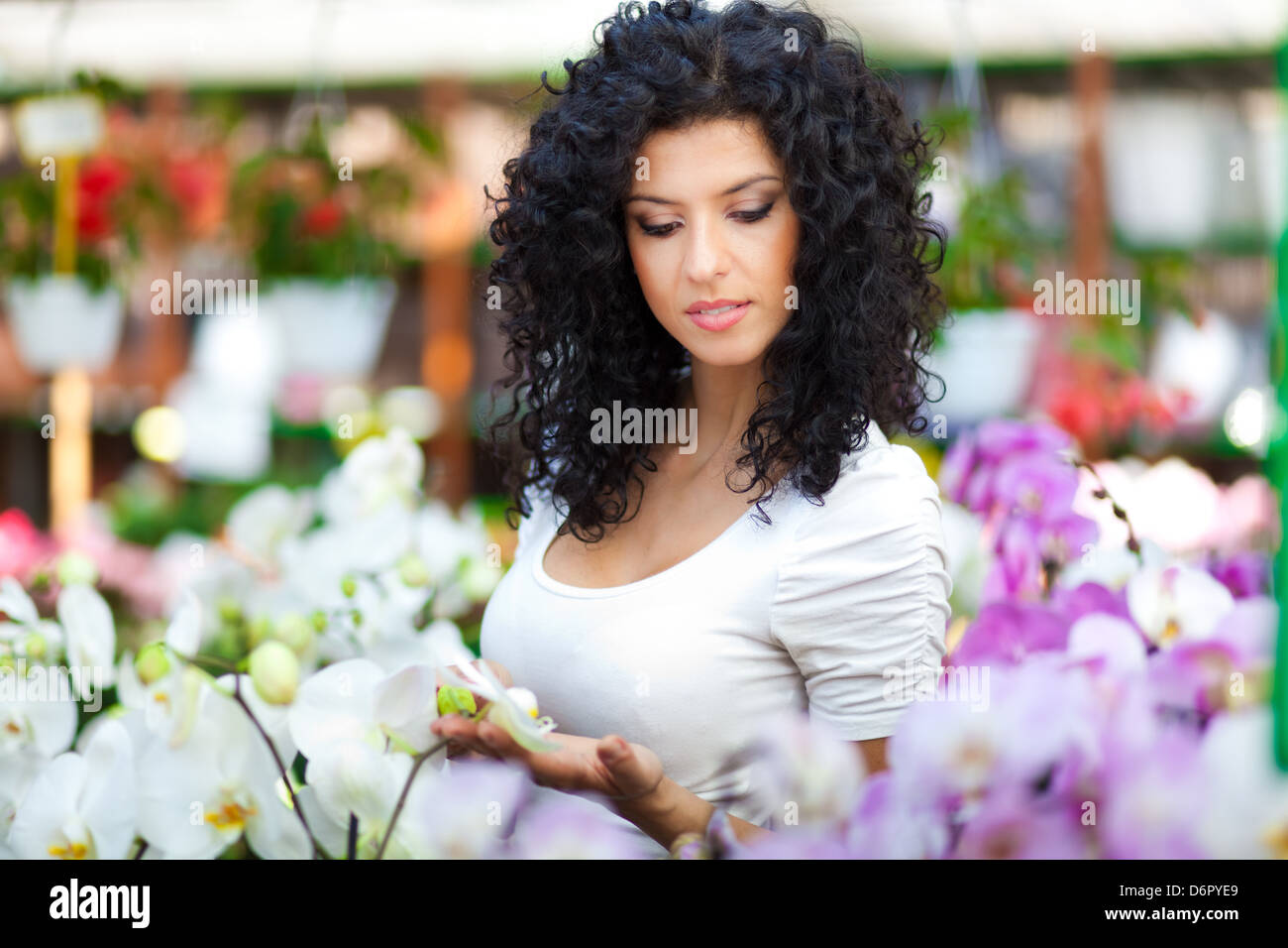 Portrait of a woman shopping in a greenhouse - Stock Image