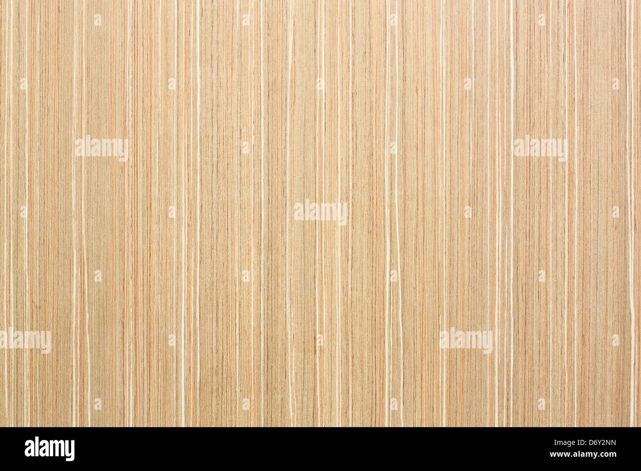 Modern Wood Wall Texture Inside Building