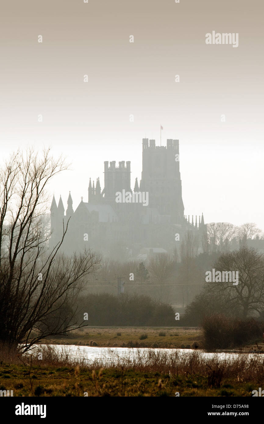 ely-cathedral-seen-from-the-fens-at-sunset-ely-cambridgeshire-uk-D75A98.jpg