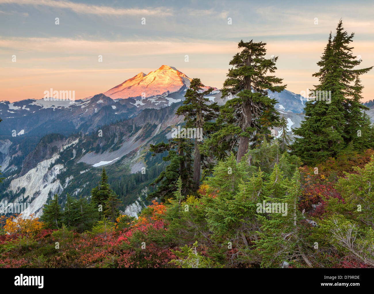 Mount Baker-Snoqualmie National Forest, WA: Mount Baker from Artists Ridge Trail, at sunrise - Stock Image
