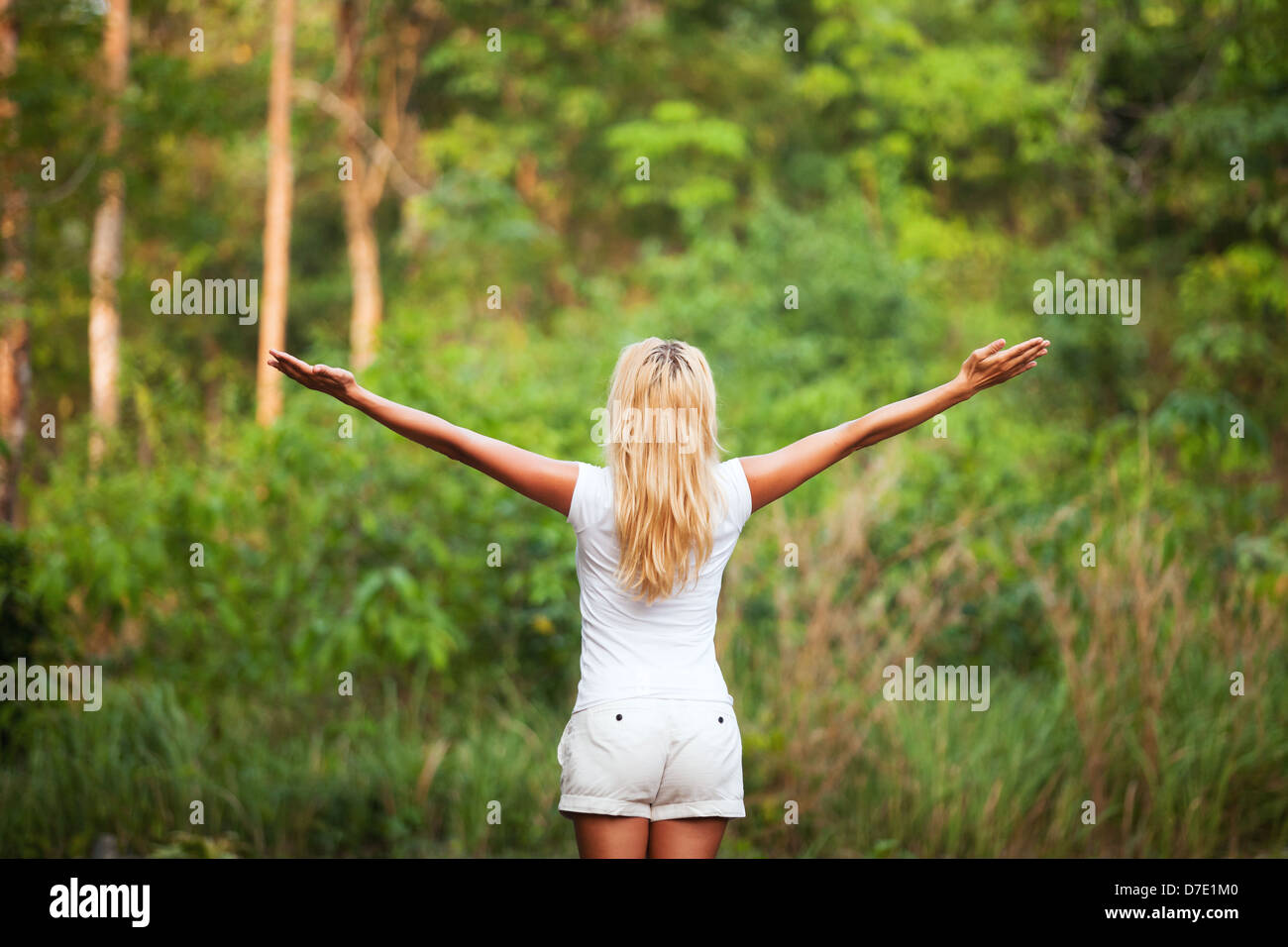 harmony with nature, back woman with raised hands in the forest - Stock Image