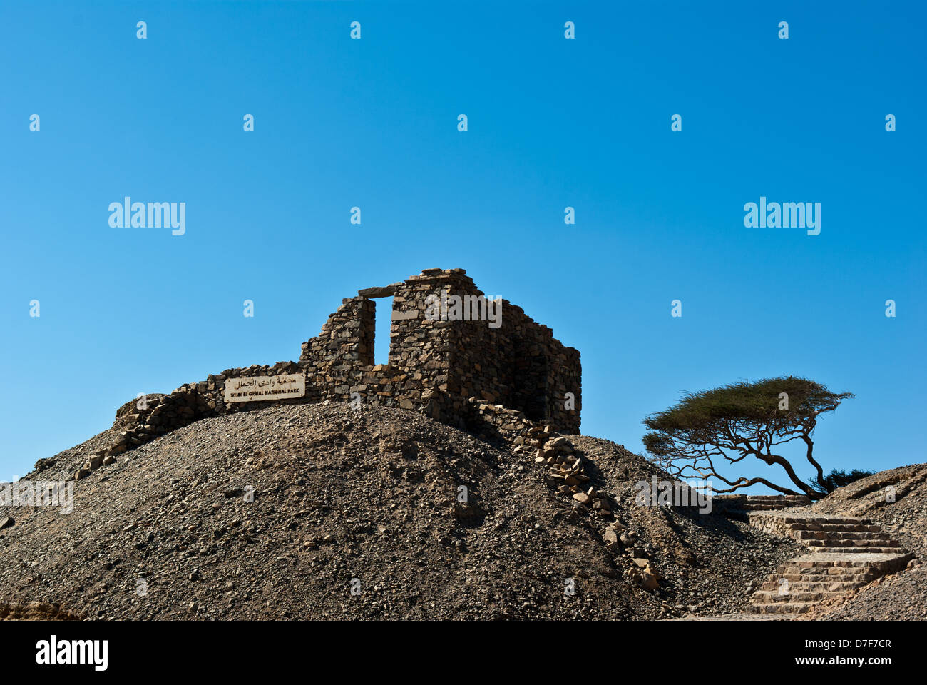 Landscape with ruins and acacias near Wadi Gamal (also spelled as Gemel, Gimal, Gemal or Jimal) National Park, Upper - Stock Image