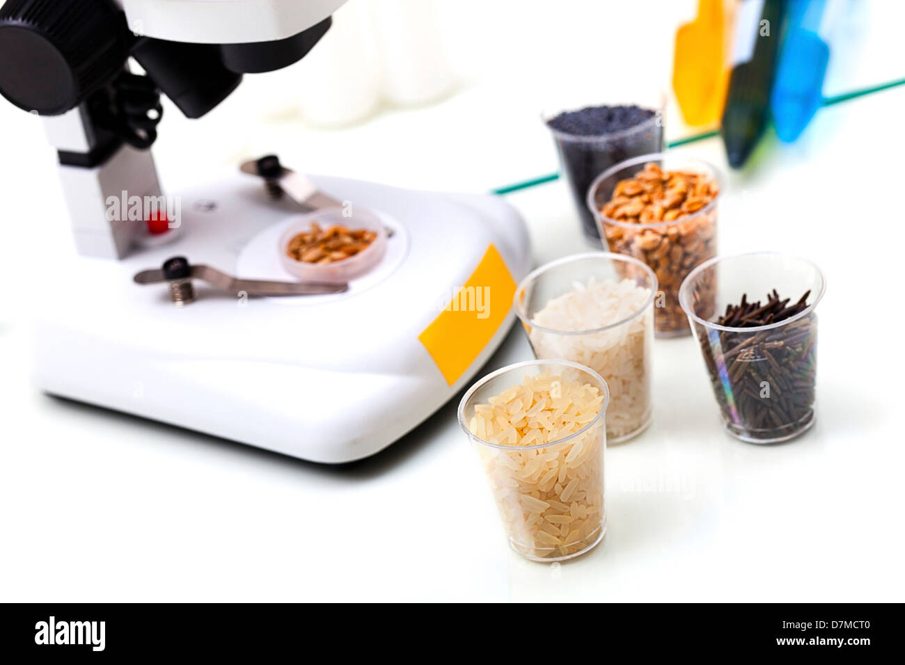 Food research, conceptual image - Stock Image