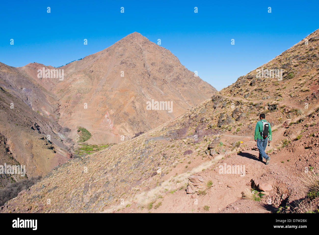 Tour guide trekking between Tacheddirt and Tizi n Tamatert, High Atlas Mountains, Morocco, North Africa - Stock Image