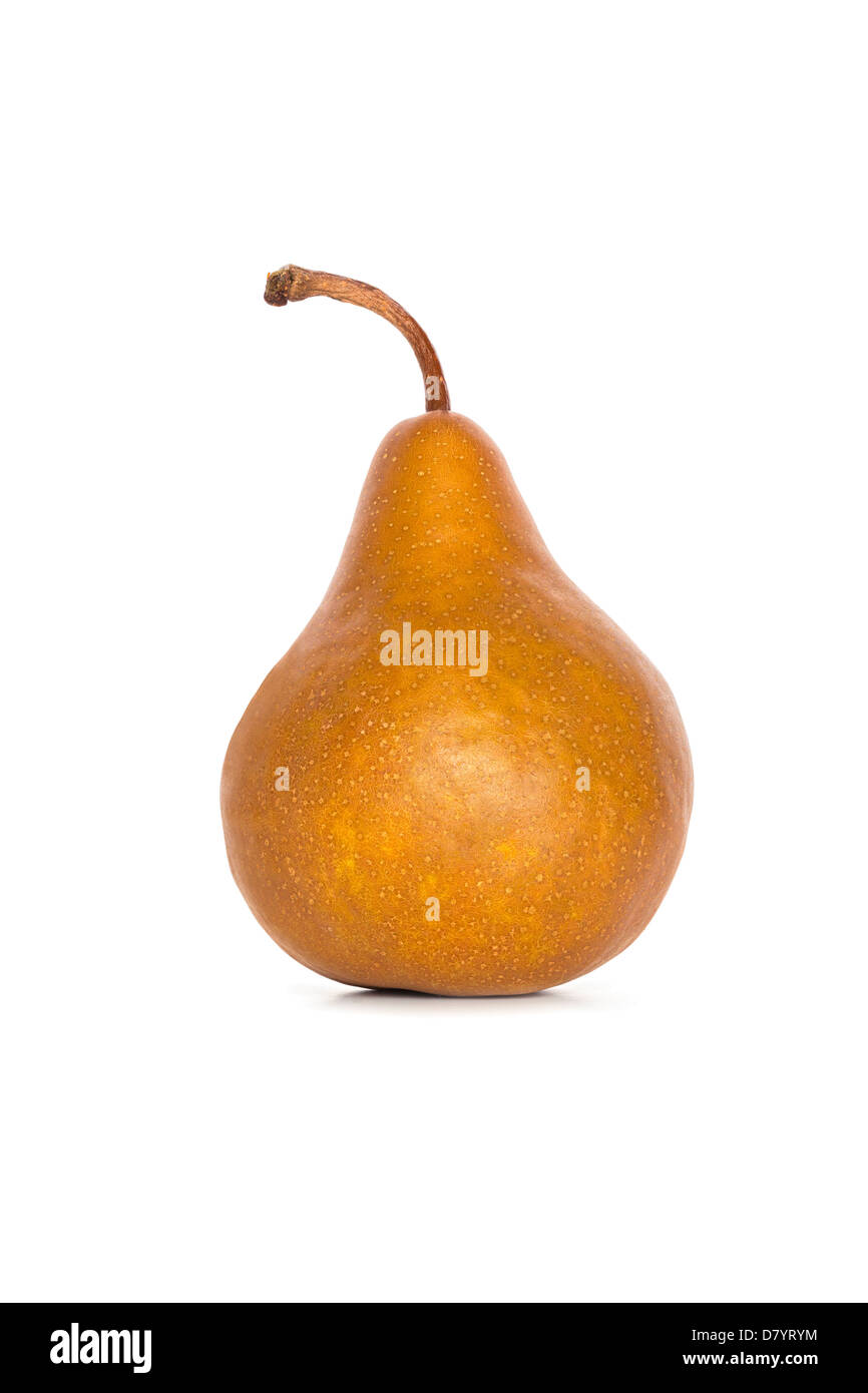 Beurre Bosc Pear isolated on white, front to back focus. - Stock Image