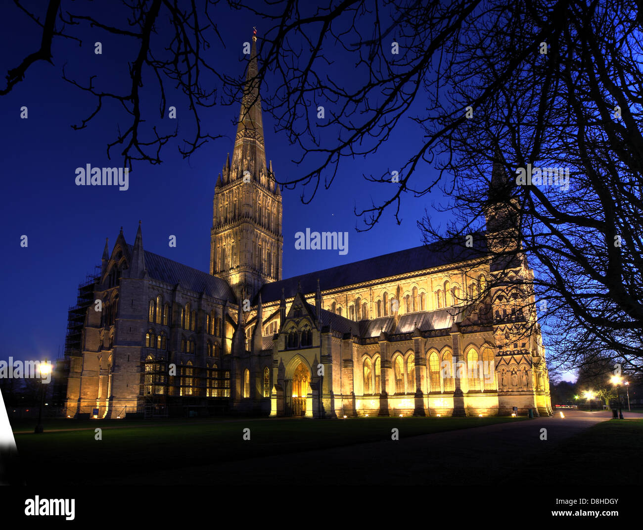 night,shot,Christmas,Xmas,lit,up,tripod,wide,lens,nightlights,lights,tree,beautiful,tourist,travel,visit,wiltshire,county,west,country,England,UK,GB,Great,Britain,couty,town,market,council,local,authority,guided,tours,tour,medieval,cathedrals,Blessed,Virgin,Mary,is an Anglican SP12EJ building,Gotonysmith 6 The Close,Salisbury,Wiltshire,England,UK,SP1,2EJ,exterior,Architects,Architect,George,Gilbert,Scott,Richard,Poore,James,Wyatt,Elias,of,Dereham,gothic,close,June,Osborne,Buy Pictures of,Buy Images Of