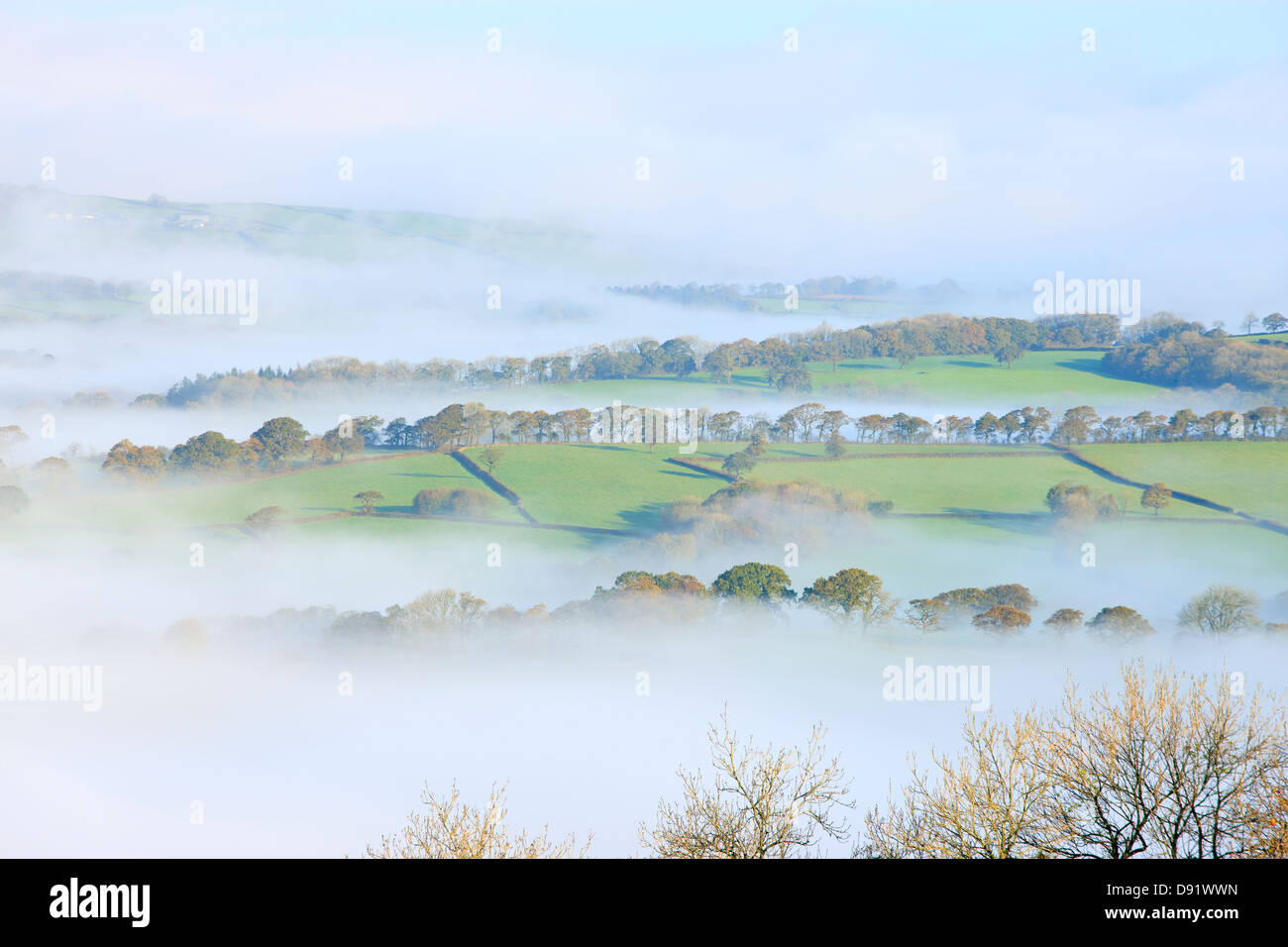 Autumn misty morning in rural countryside Tywi Valley Carmarthenshire Wales - Stock Image