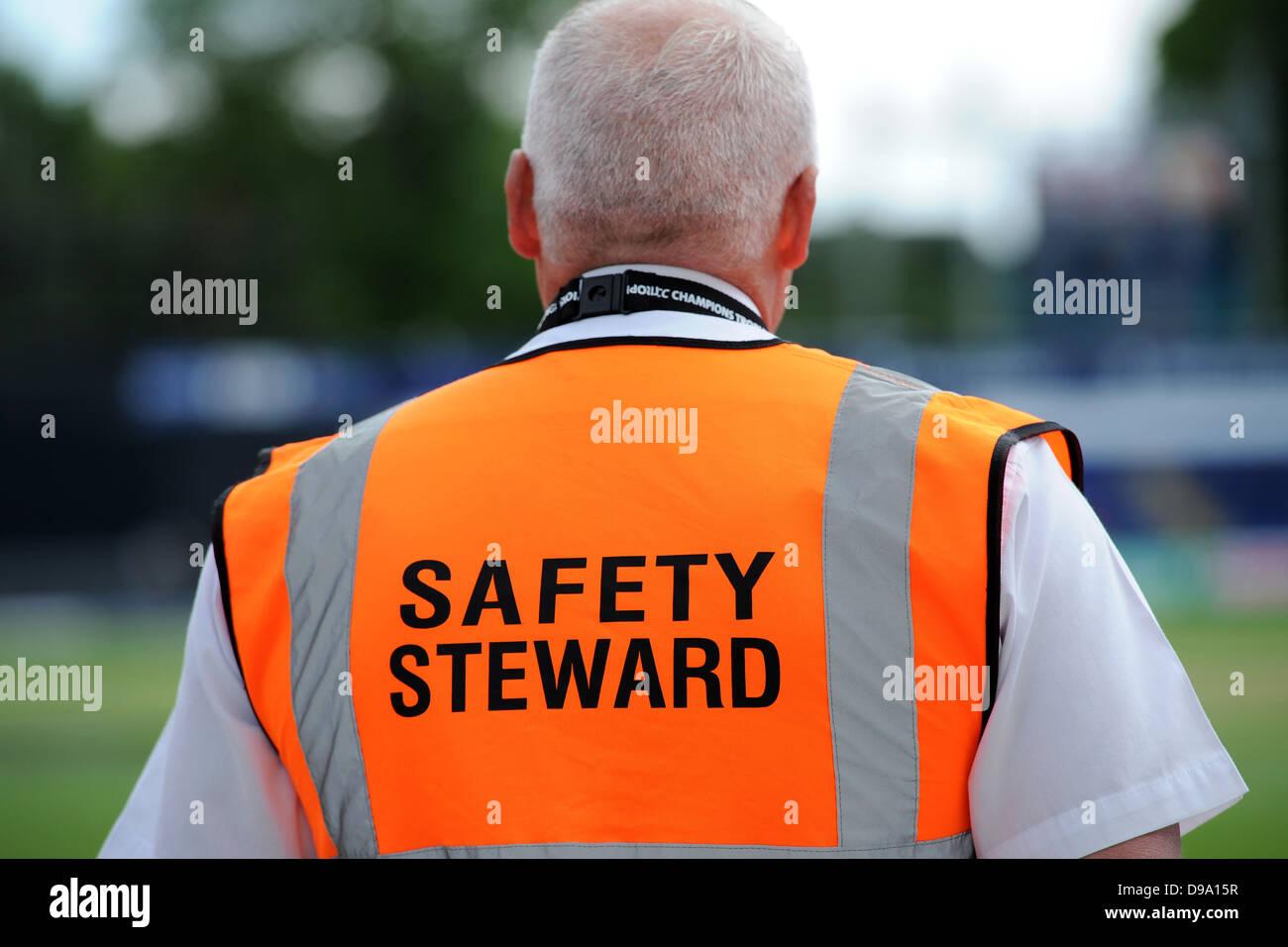 Image result for Safety Steward