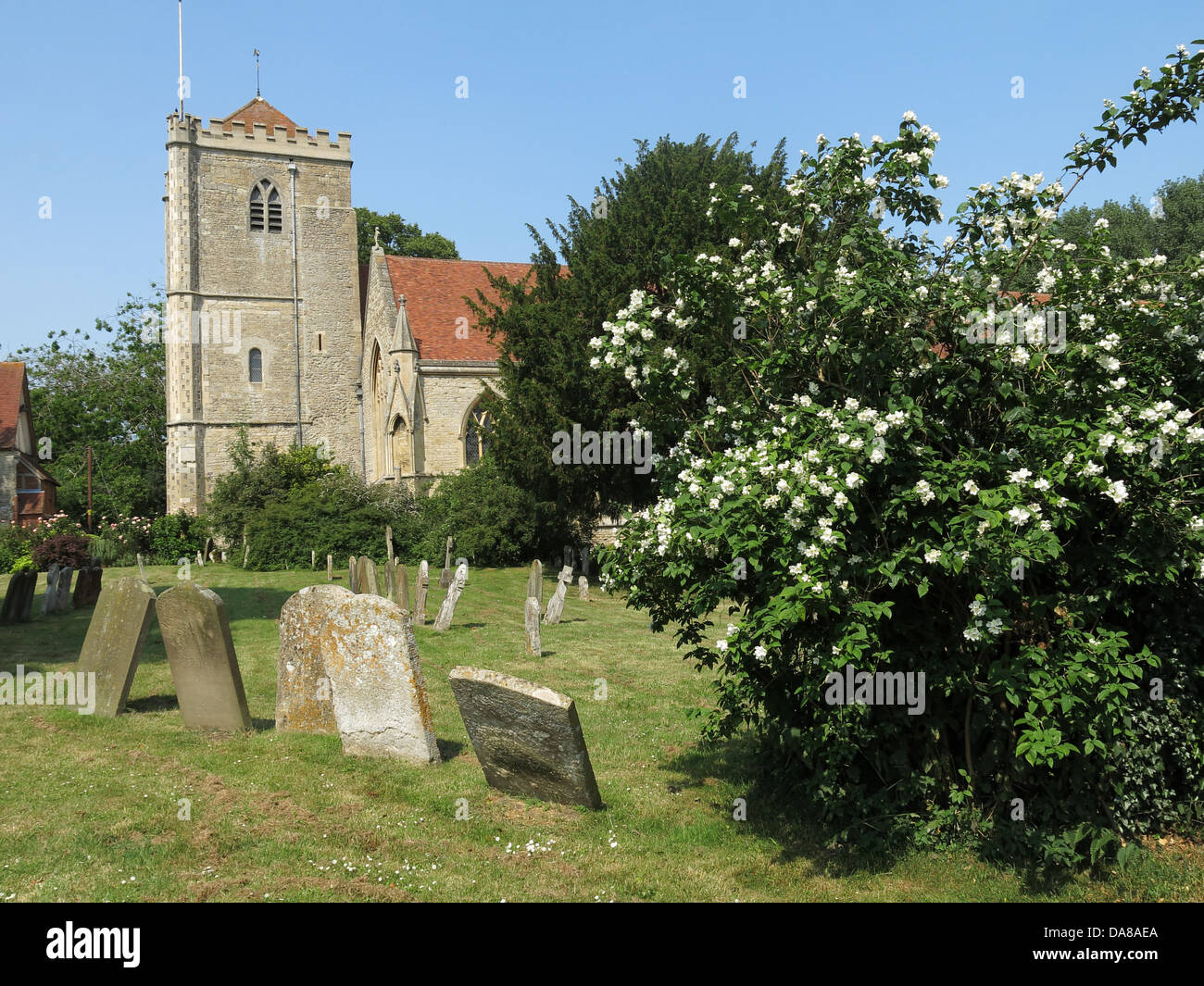 Beautiful,Dorchester,On,Thames,building,interior,of,St,Peter,&,St,Paul,HDR,oxen,oxford,oxfordshire,ancient,monument,exterior,with,trees,in,bloom,summer,2013,graveyard,cemetary,gravestones,graves,stones,Gotonysmith monuments NT,Buy Pictures of,Buy Images Of