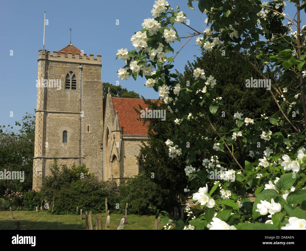 Beautiful,Dorchester,On,Thames,building,interior,of,St,Peter,&,St,Paul,HDR,oxen,oxford,oxfordshire,ancient,monument,summer,in,flower,flowers,graveyard,Gotonysmith monuments NT,Buy Pictures of,Buy Images Of
