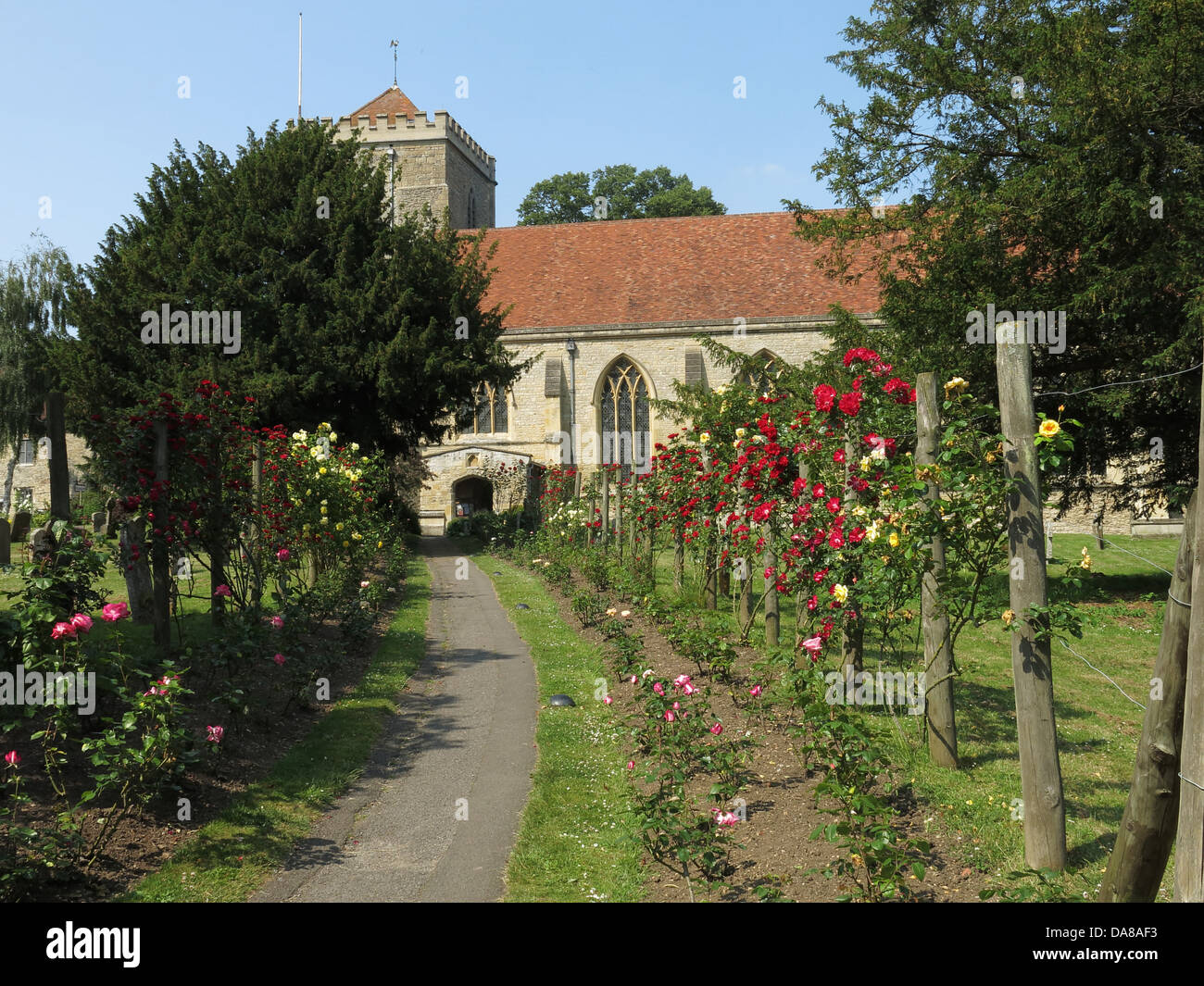 Beautiful,Dorchester,On,Thames,building,interior,of,St,Peter,&,St,Paul,HDR,oxen,oxford,oxfordshire,ancient,monument,Garden,&,Graveyard,of,Beautiful,Dorchester,On,Thames,Abbey,Church,of,St,Peter,&,St,Paul,flowers,summer,in,roses,walk,path,Gotonysmith monuments NT,Buy Pictures of,Buy Images Of