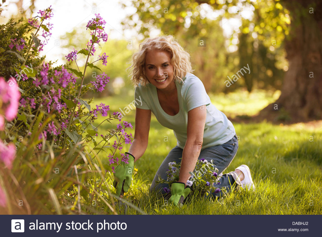 A mature woman gardening - Stock Image