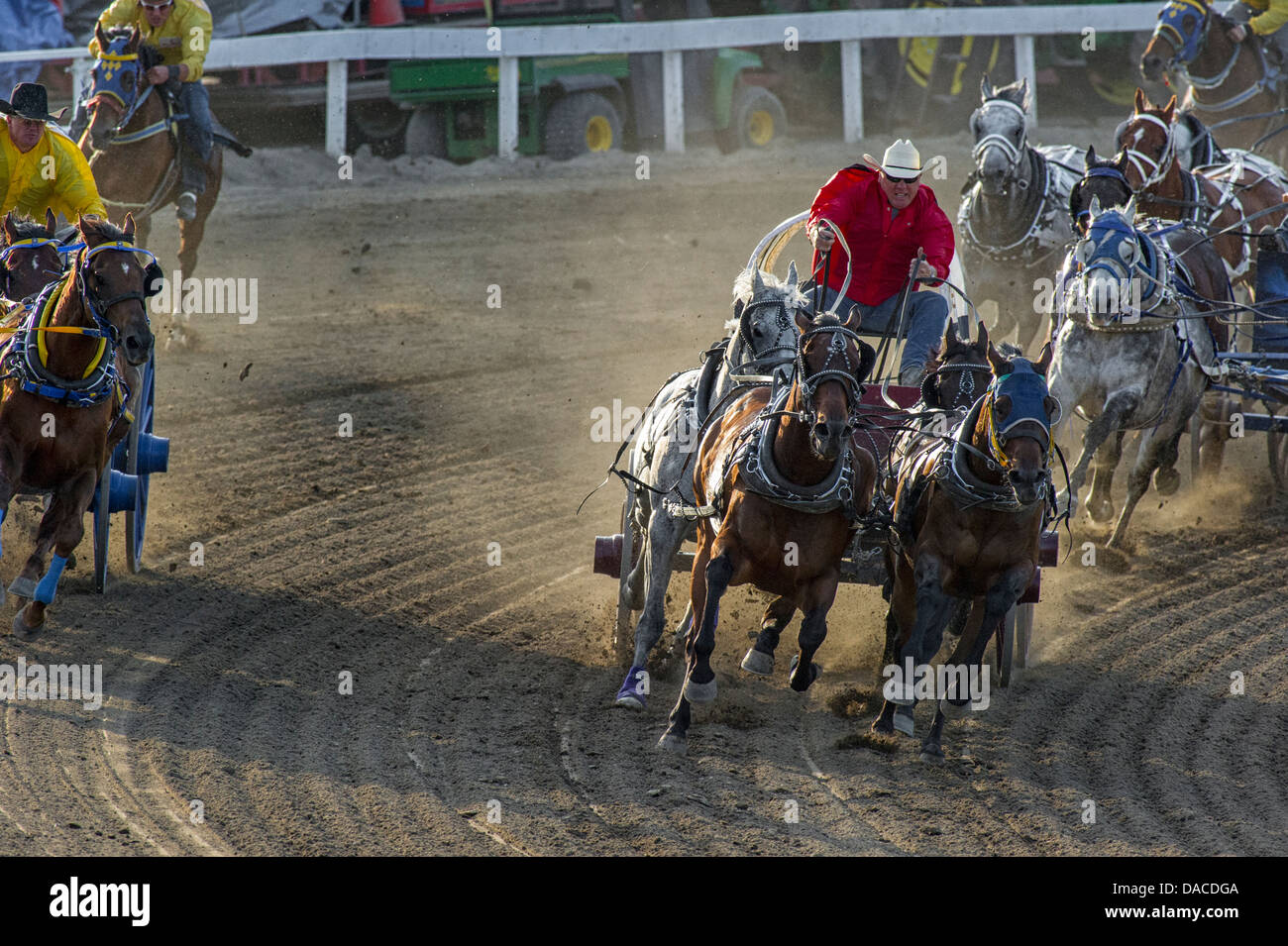 chuckwagon-race-at-the-calgary-stampede-