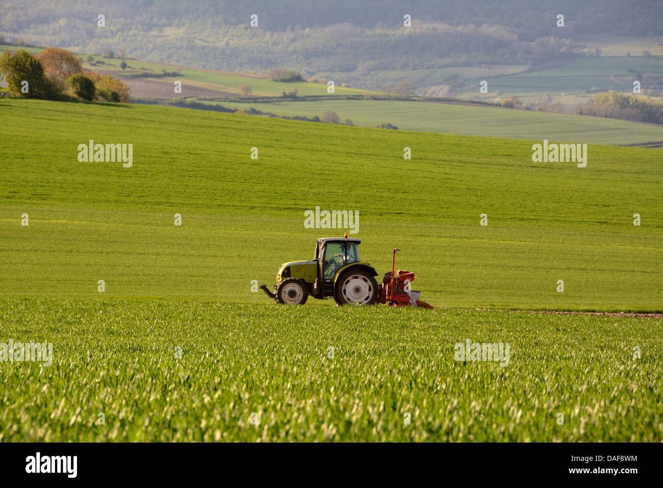 Tractor preparing the soil for the sowing of new crops. Puy de Dome. Auvergne. France - Stock Image