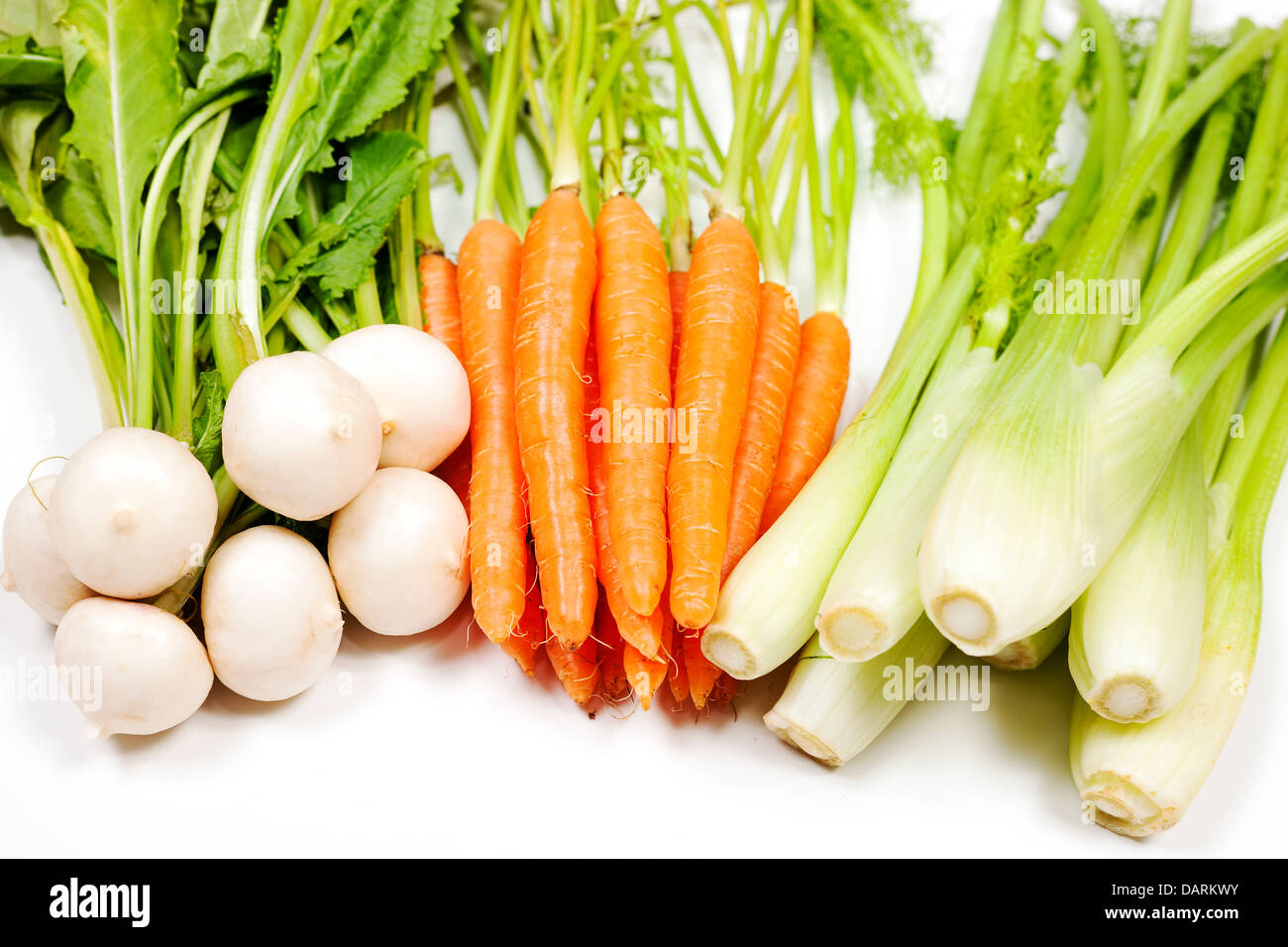 Turnip, carrot and celery from garden on white background - Stock Image