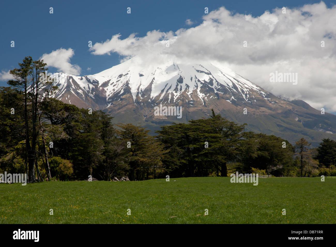 South Pacific, New Zealand, North Island. View of volcanic mountain Mt. Taranaki. - Stock Image