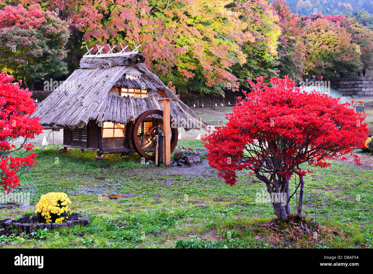 Huts and fall foliage in Kawaguchi, Japan. - Stock Image