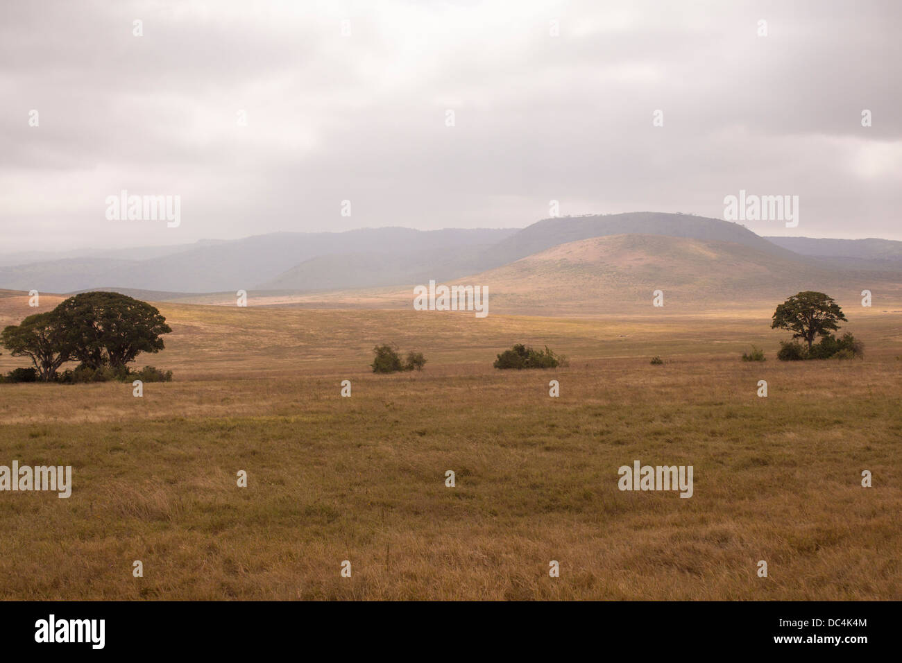 scenic-vista-of-the-ngorongoro-crater-in