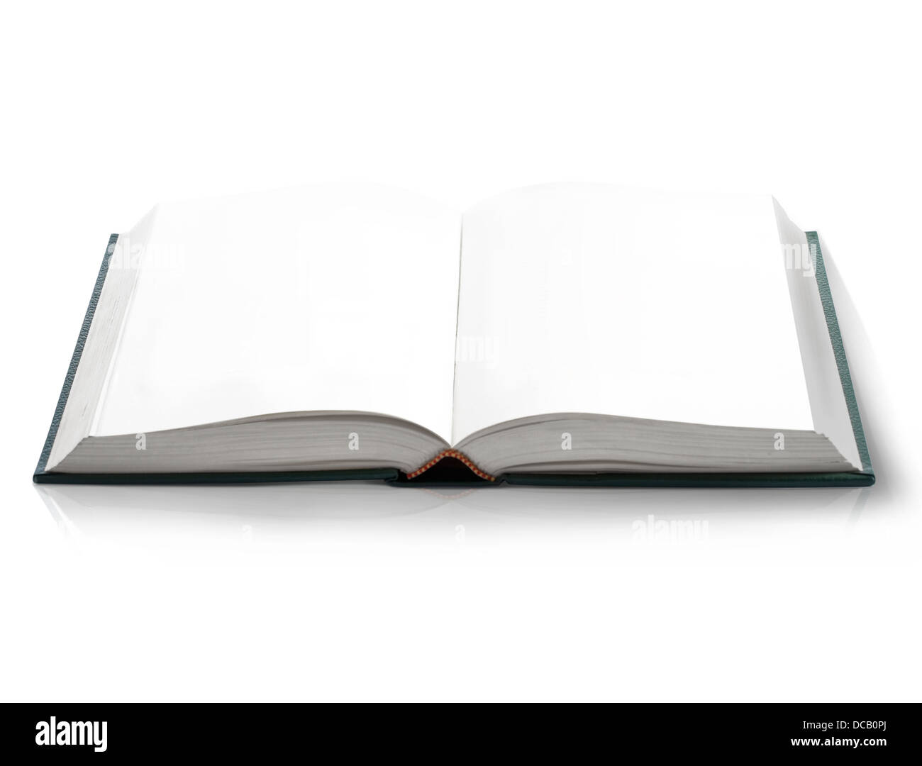 hard cover open book with empty blank pages viewed by bird eye