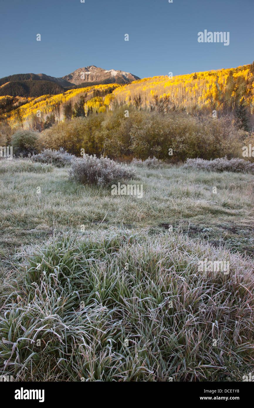 USA, Colorado, San Juan Mountains. Sunshine Mountain looms above a frosted valley floor. - Stock Image