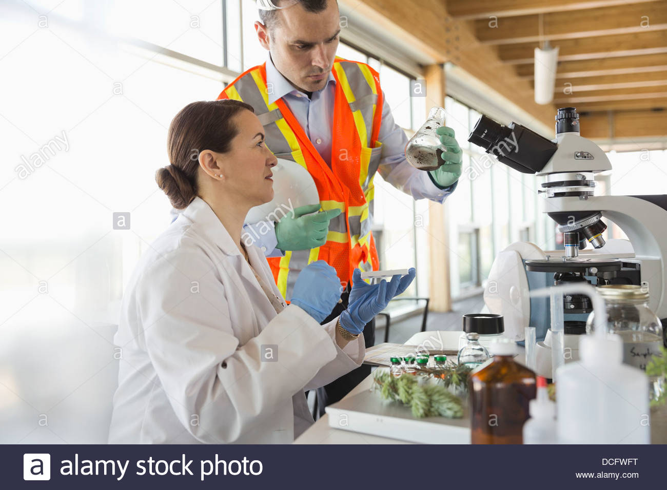 Technicians analyzing soil samples in laboratory - Stock Image