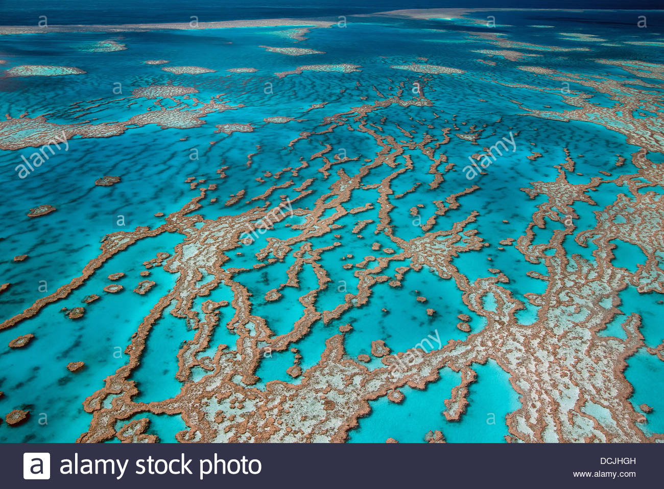 hardy-reef-on-the-great-barrier-reef-whi