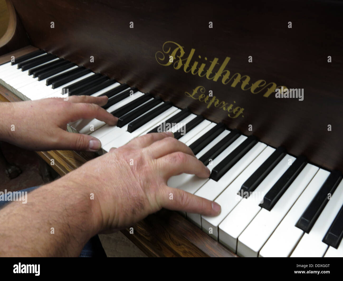 quality,keys,ivory,black,hand,hands,player,human,hand,fingers,music,musician,Playing a piano,Playing a,Bluthner Piano,human hands,quality piano,GoTonySmith,@HotpixUK,adult,adults,angle,arts,background,black,close-up,color,culture,entertainment,finger,focus,hand,hands,high,hobbies,human,ideas,in,instrument,key,keyboard,male,males,man,men,music,musical,musician,one,only,ornate,part,performance,person,photography,piano,playing,reflection,row,selective,shot,skill,Deutsche,Deutschland,Buy Pictures of,Buy Images Of,Images of a piano player,Stock Images