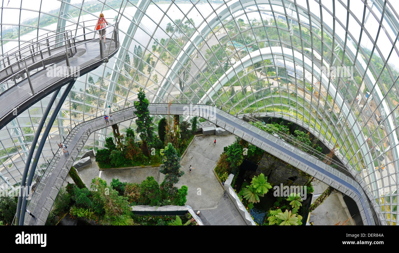 the-cloud-forest-a-large-indoor-greenhouse-set-in-the-grounds-of-the-DER84A.jpg