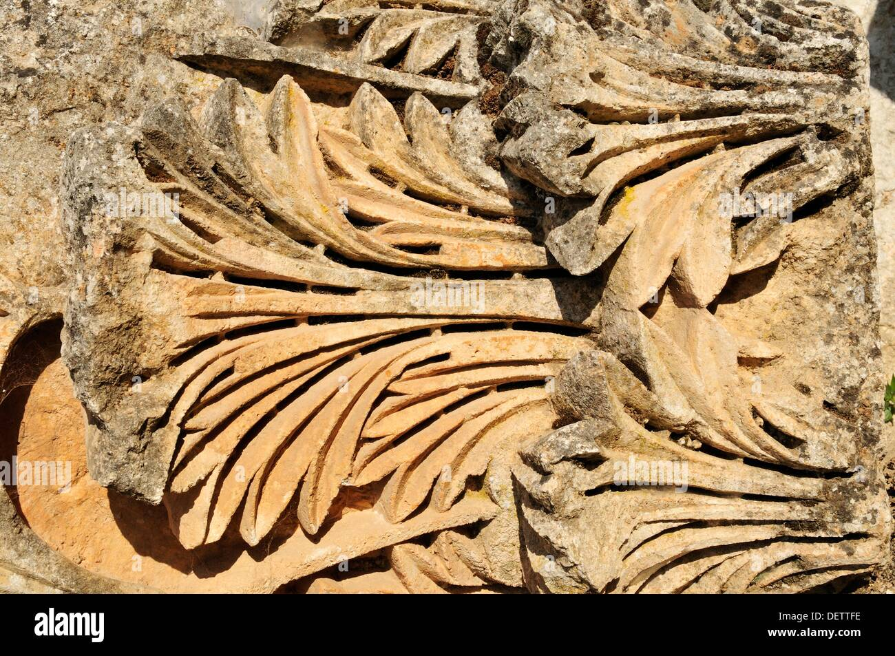 carved stone with Acanthus leaves, ruin of Saint Simeon Monastery, Qala´at Samaan, Qalaat Seman archeological - Stock Image