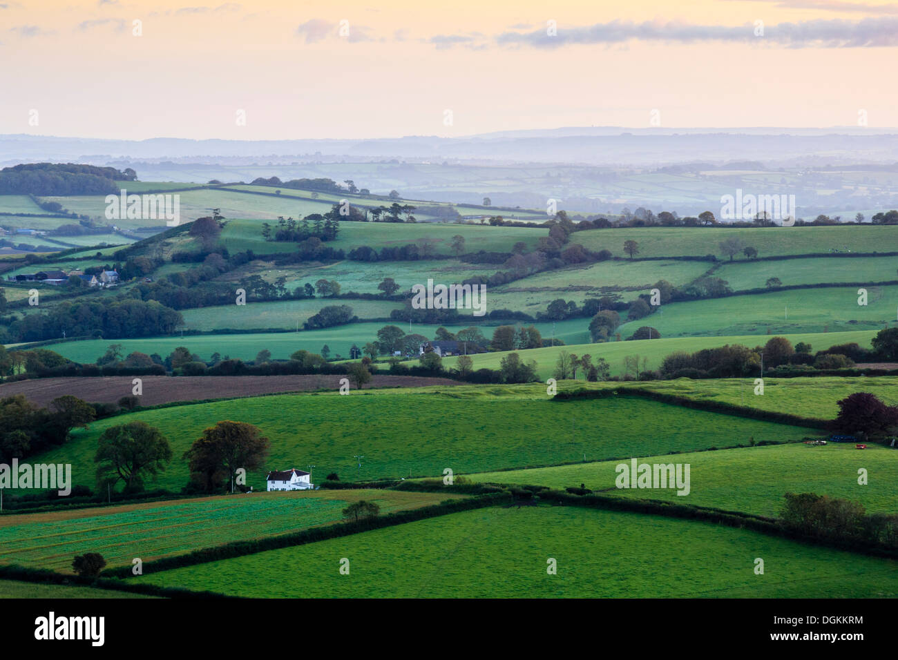 Early morning views across west Dorset from Pilson Pen hill fort which is the highest point in Dorset. - Stock Image