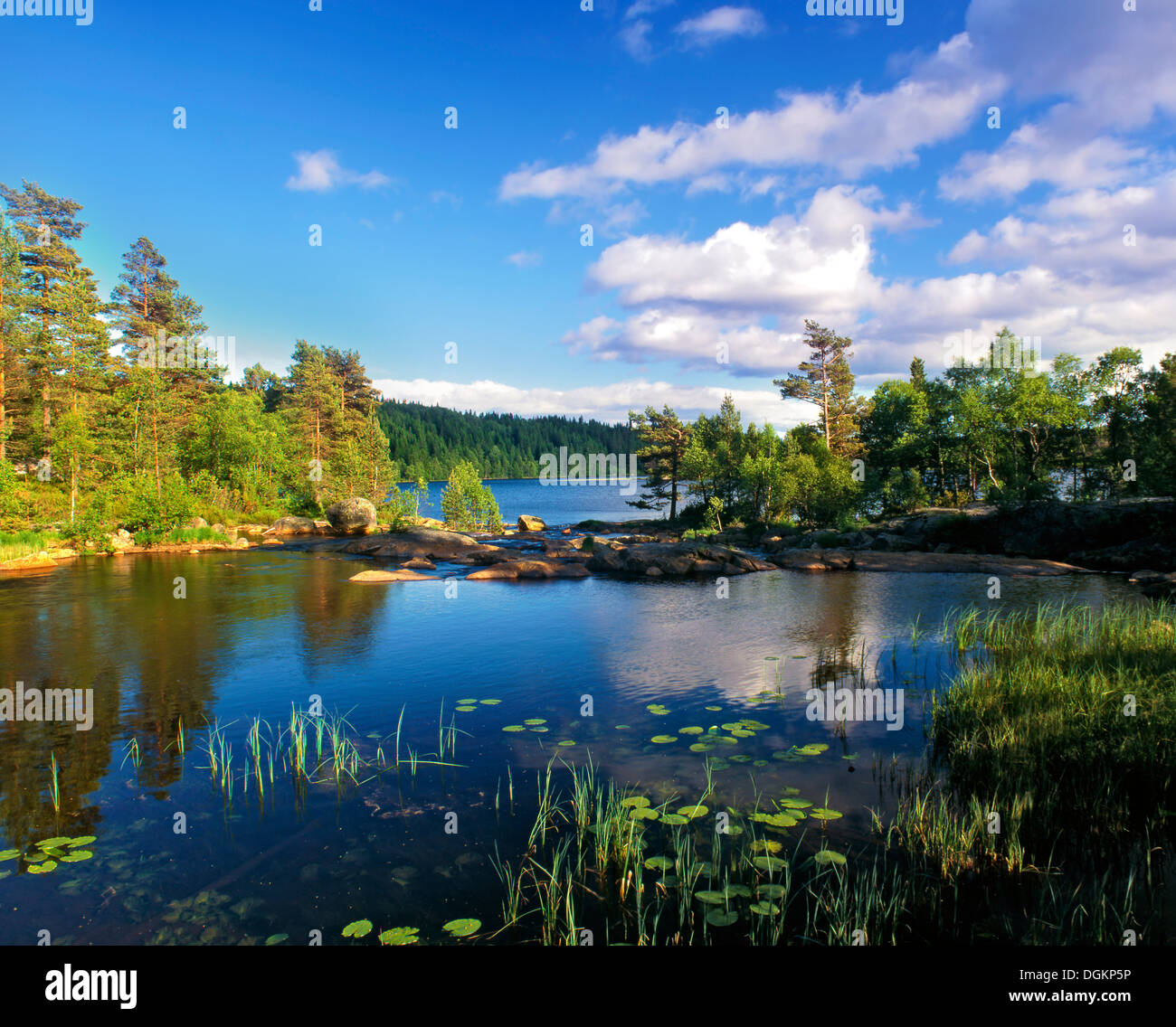 A view of a tranquil lake in southern Norway. - Stock Image