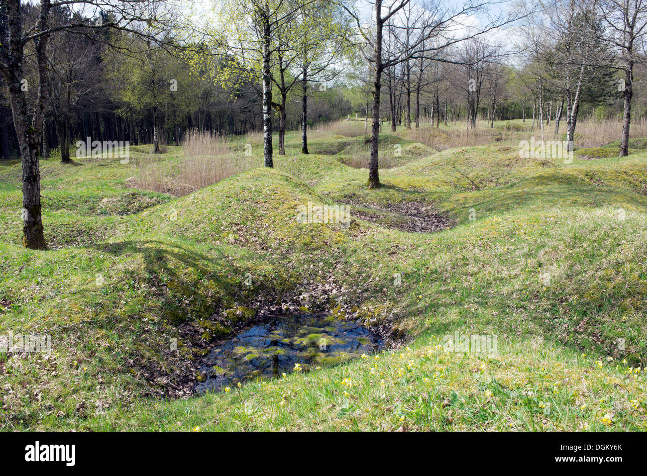 Bomb craters in the grounds, memorial for the Battle of Verdun, First World War, Verdun, Lorraine, France, Europe - Stock Image