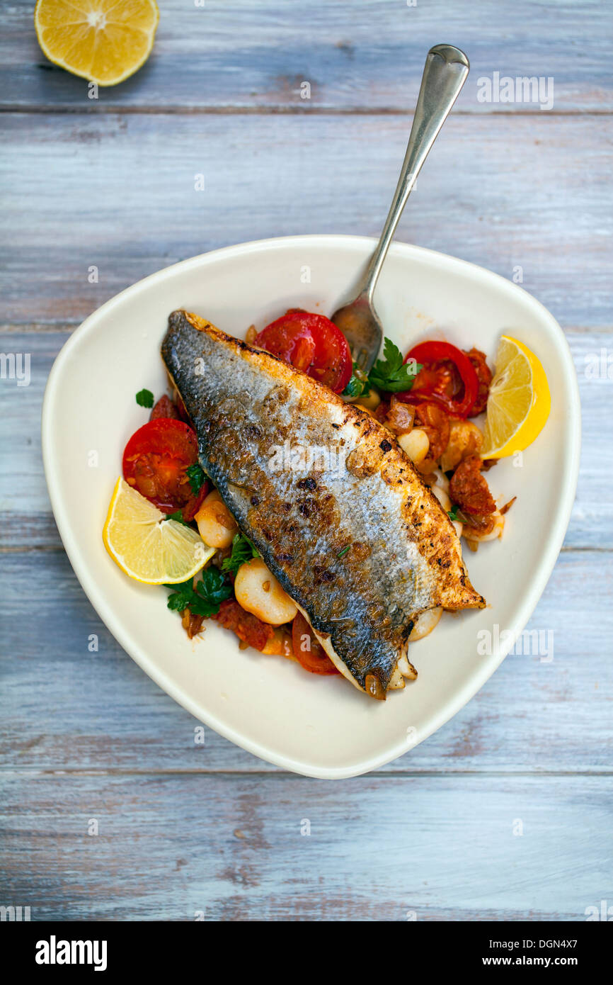 Pan fried sea bass with butter bean and chorizo salad - Stock Image