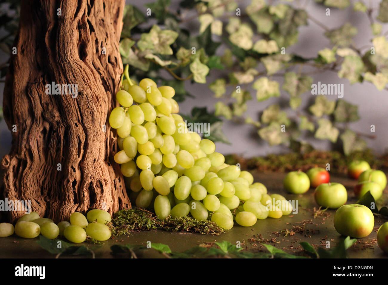 Grapes still life - Stock Image
