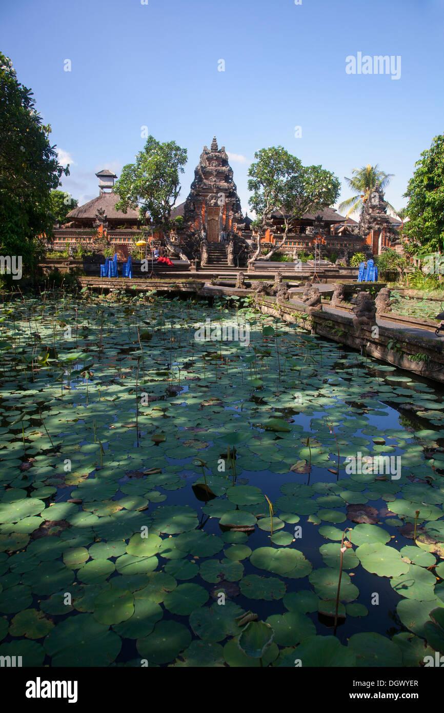 Lotus Flower Pond Garden Restaurant Ubud Bali Indonesia Relax Eat